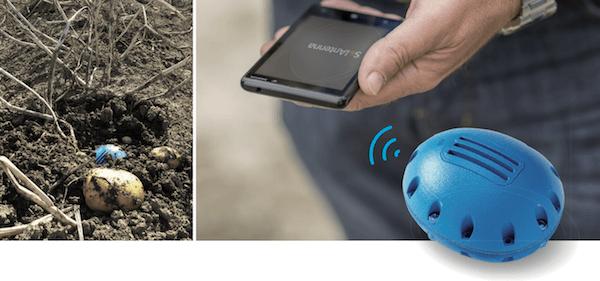 Elektronische aardappel met app en in het veld