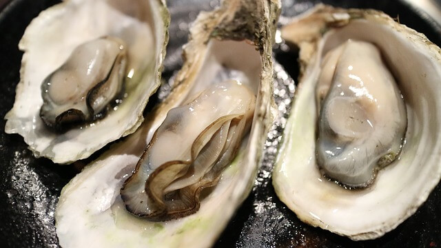 Oesters uit New York